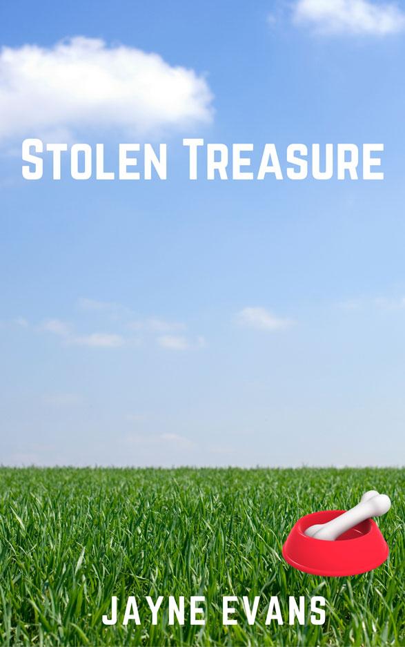 Stolen Treasure by Jayne Evans, The Pack romantic suspense series